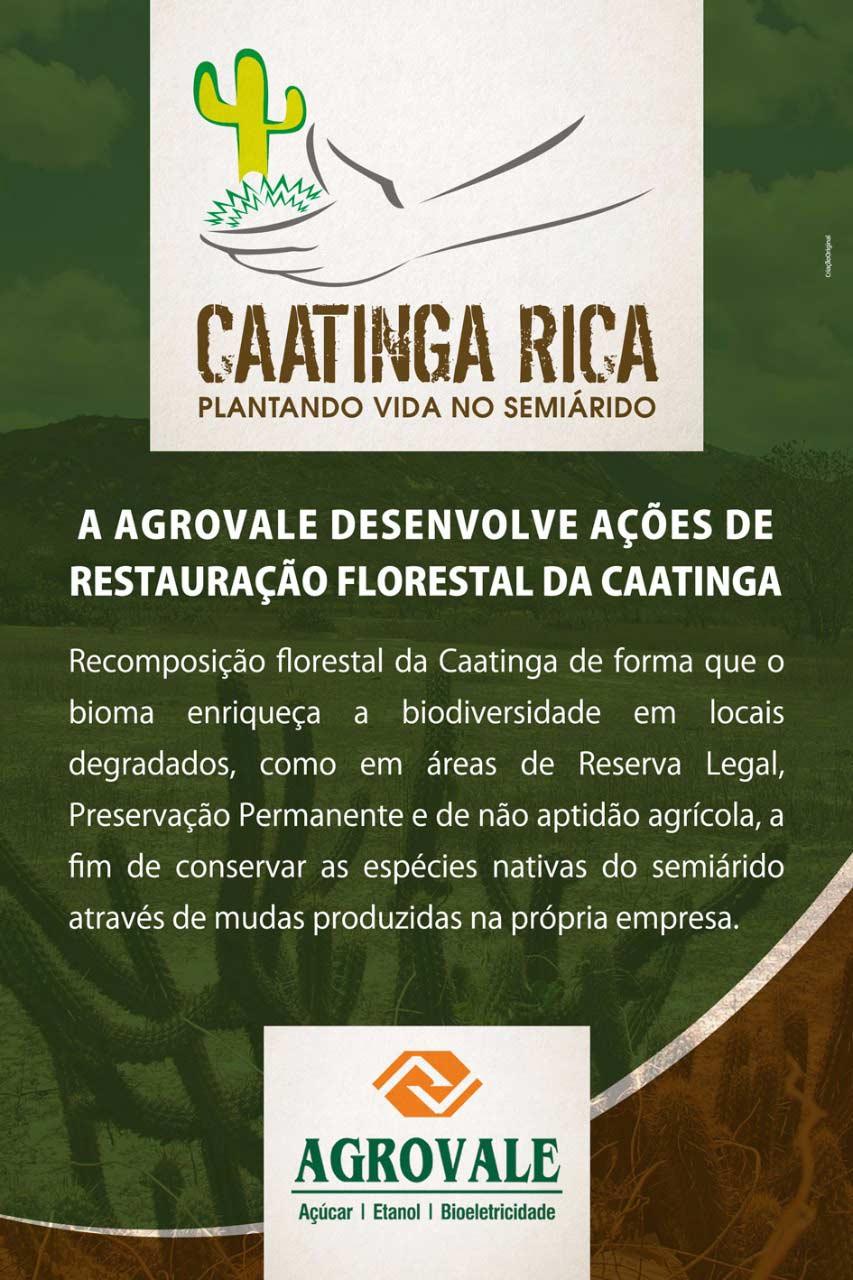 agrovale_caatinga_rica